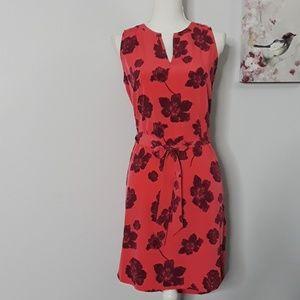 ANN TAYLOR PRECIOUS  DRESS